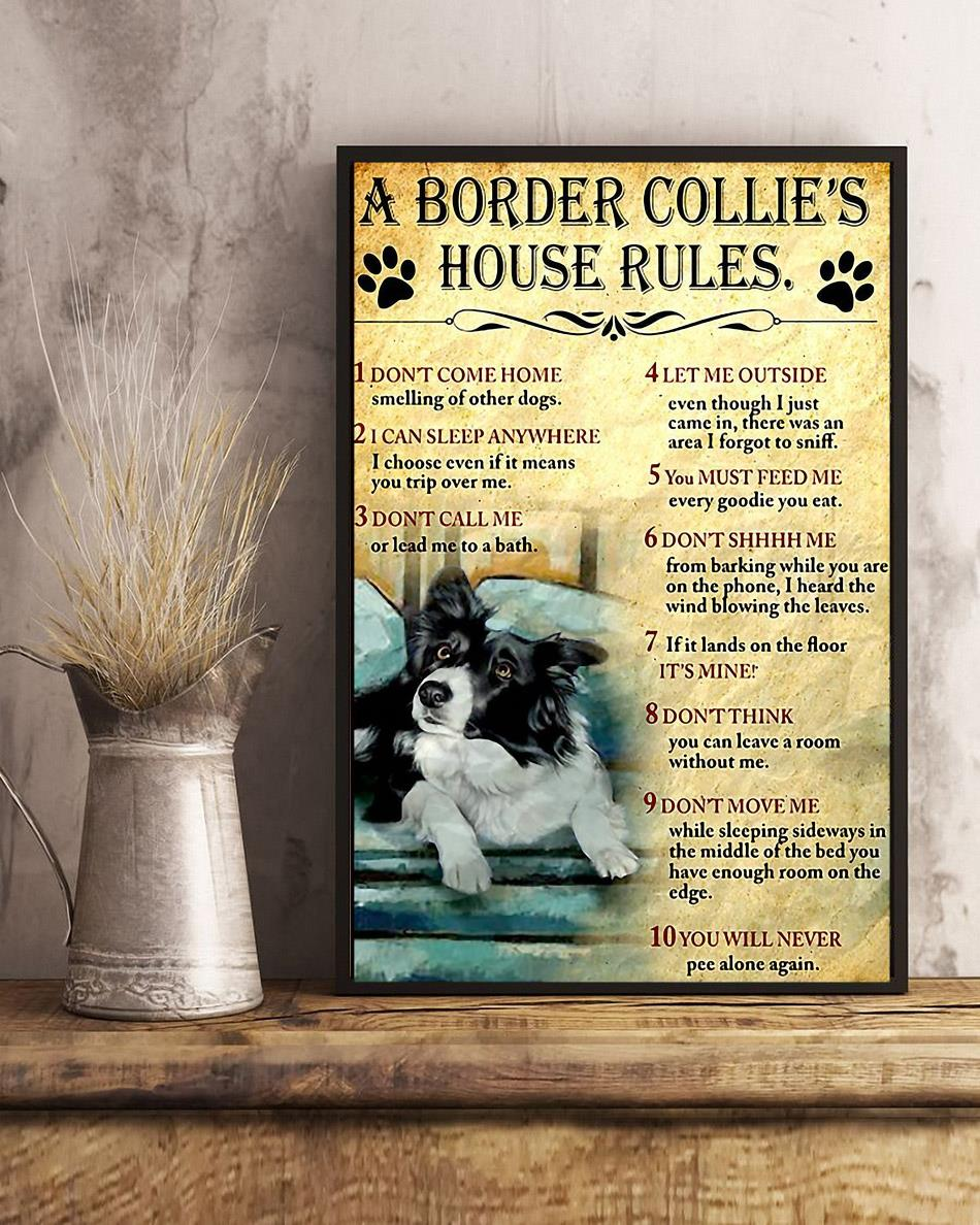 A Border Collie house rules poster canvas art