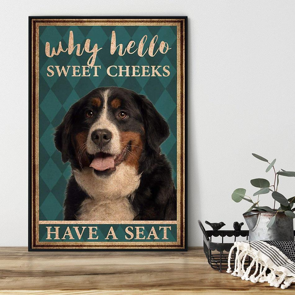 Bernese Mountain why hello sweet cheeks have a seat poster black