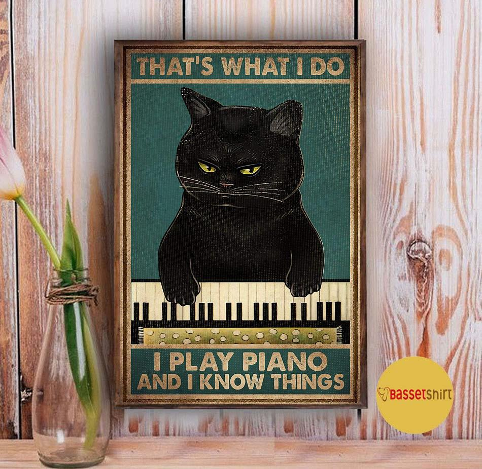 Black Cat Thats What I Do I Play Piano And I Know Things