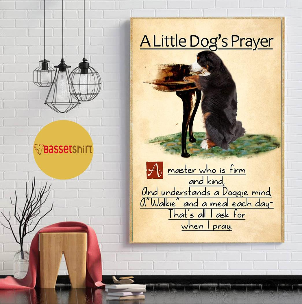 Bernese mountain a little dog's praye poster