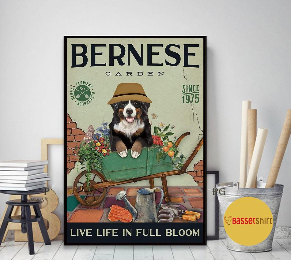 Bernese Mountain garden live life in full bloom poster canvas art decor