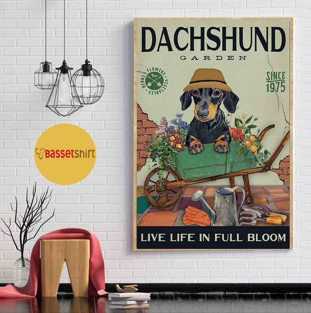 Dachshund garden live life in full bloom poster canvas
