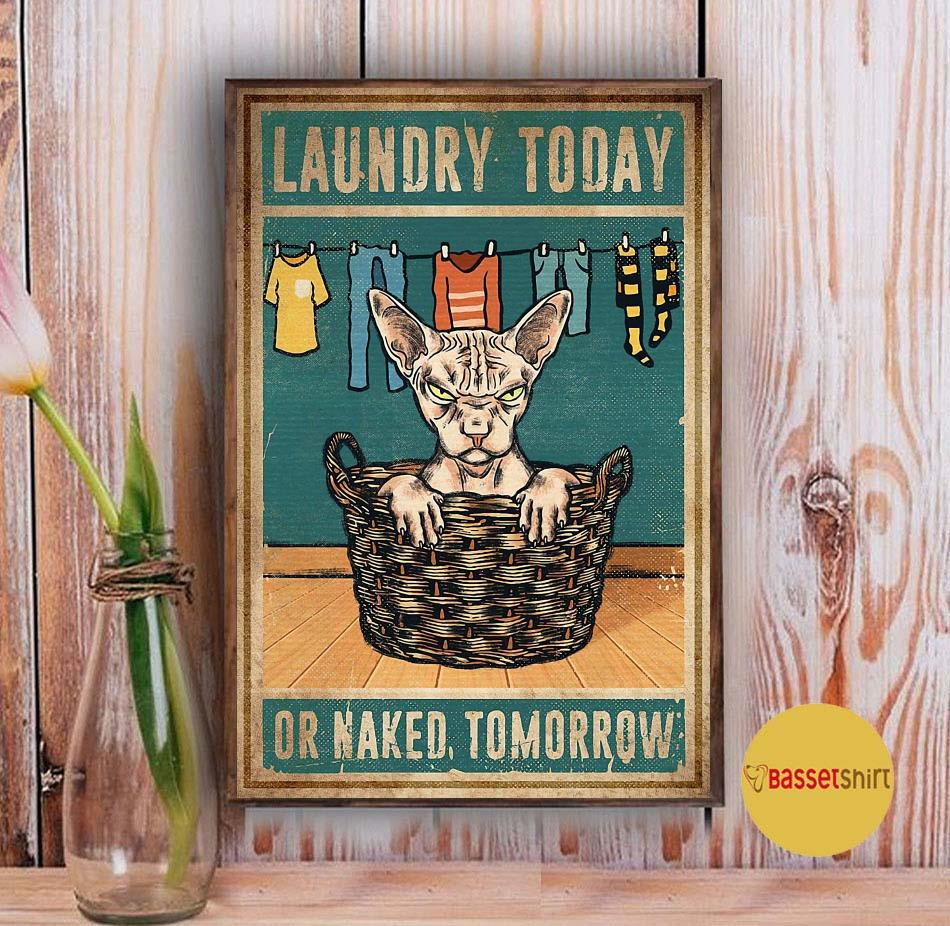 Sphynx cat laundry today or naked tomorrow poster Vintage
