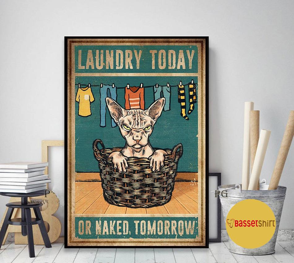Sphynx cat laundry today or naked tomorrow poster art decor