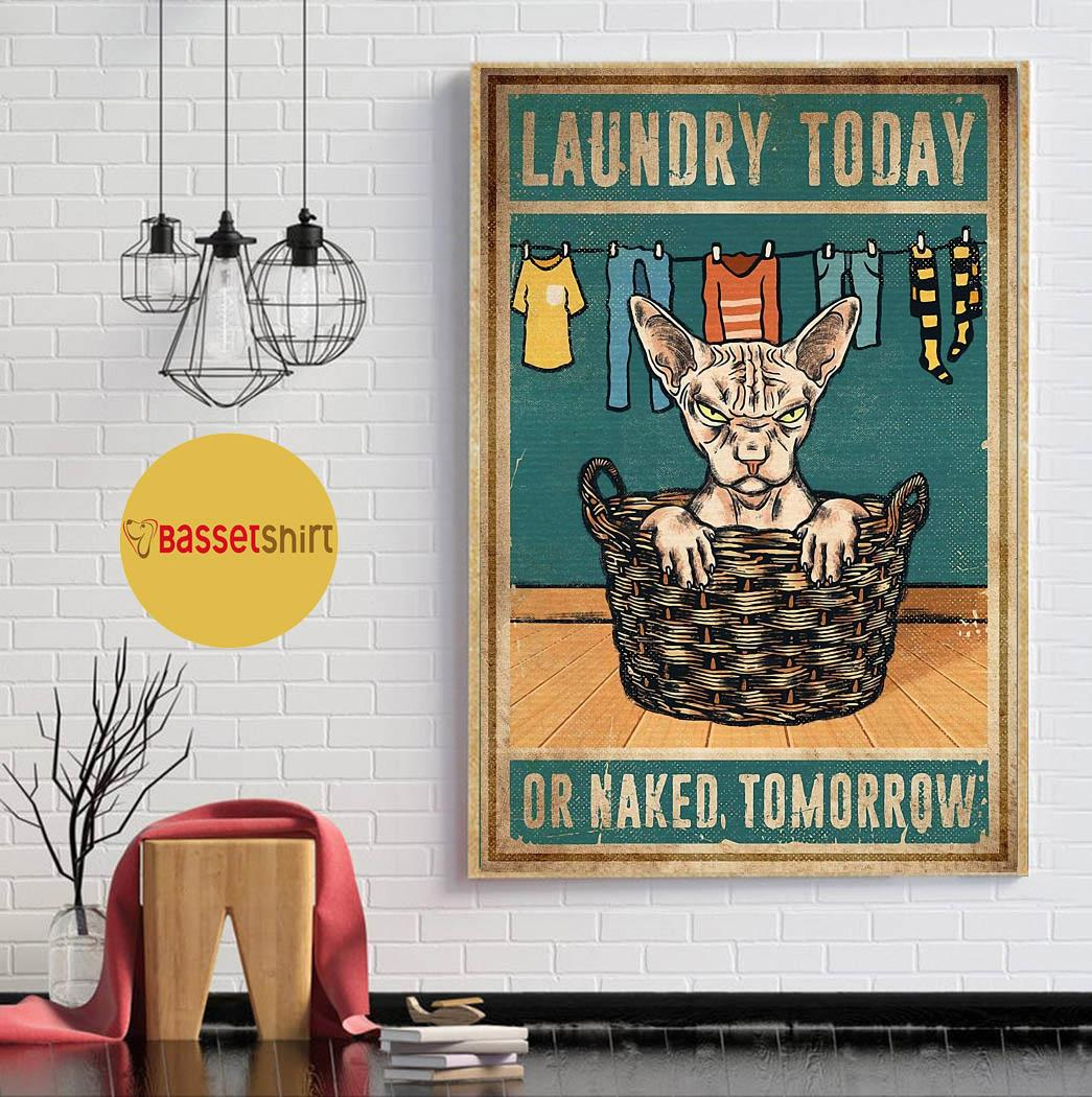 Sphynx cat laundry today or naked tomorrow poster