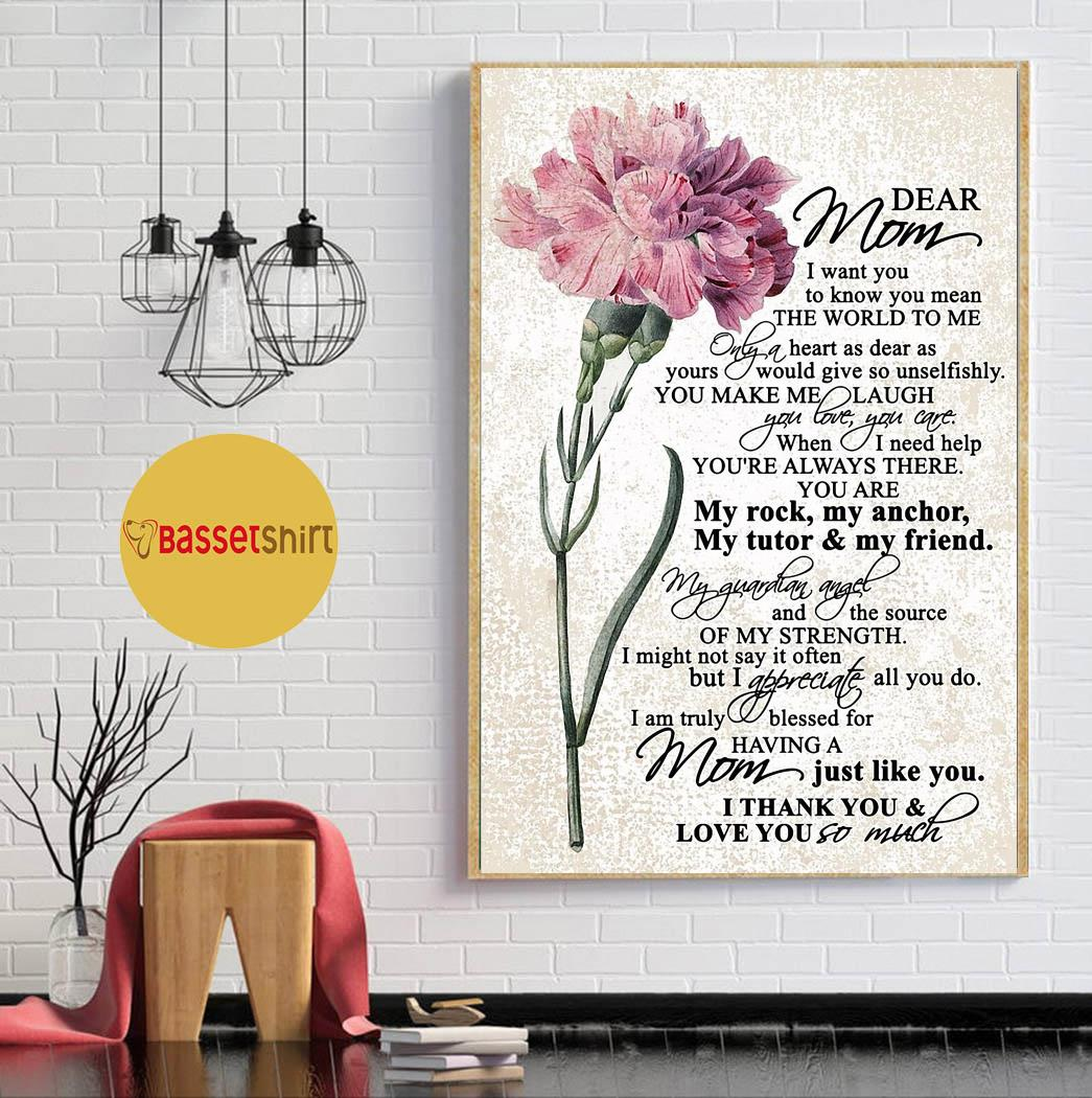 Dear mom I want you to know you mean the world to me poster canvas
